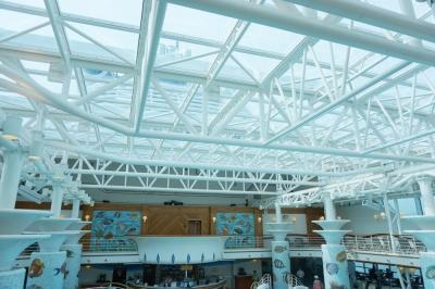 カプリソリーフプール天井
