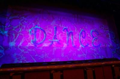 プリンセスシアターショー幕