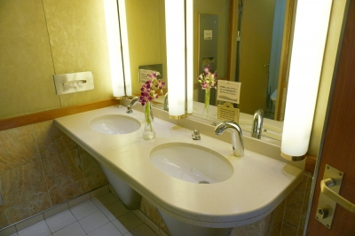 ダイヤモンドプリンセス公共のトイレ2