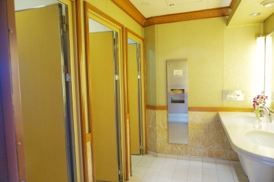 ダイヤモンドプリンセス公共のトイレ3