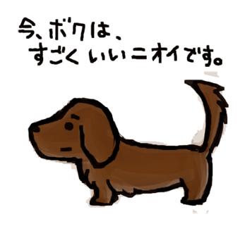 犬シャンプー