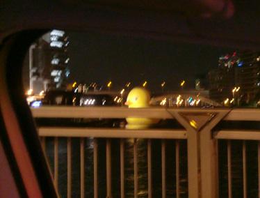 巨大アヒル 夜景