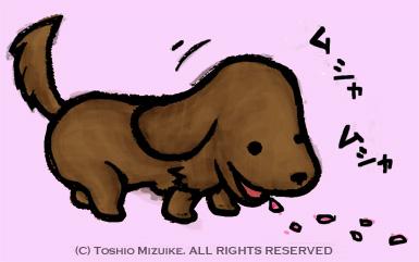 桜の花びら 食用 食べる犬