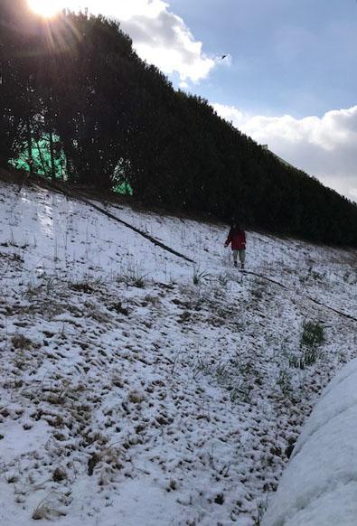 南河内 積雪 2018