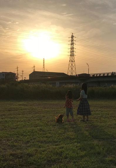osaka  夕焼け sunset