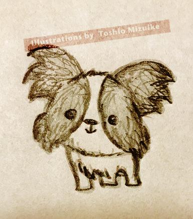 パピヨン イラスト かわいい kawaii  dog