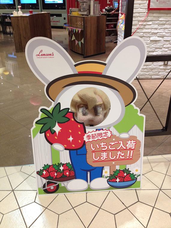 ichigo_kaodashi.JPG