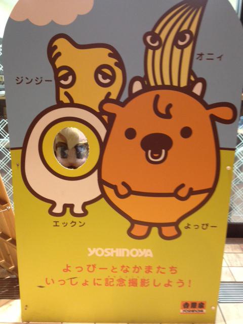 kao_yoshinoya.JPG
