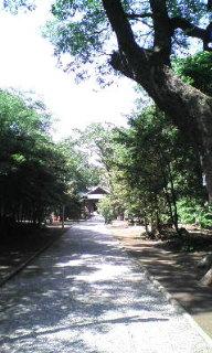江田神社(みそぎ池)
