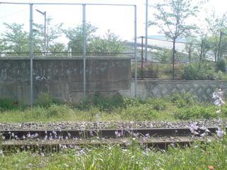和田岬線からスタジアムが
