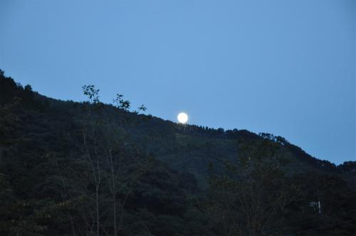 月の神楽_09