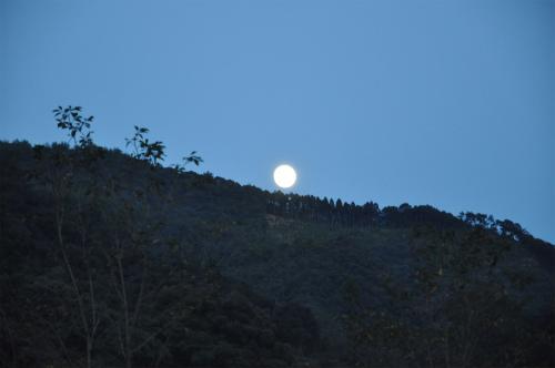 月の神楽_10