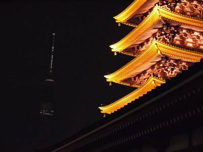 夜ツリーと五重塔