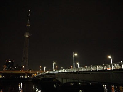 夜ツリーと言問橋