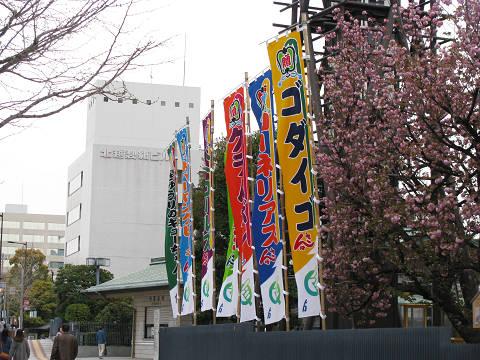国技館の幟1