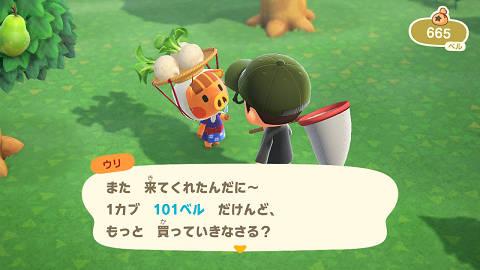 ウリ坊カブ売り101