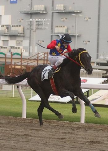 南関東競馬モバイル