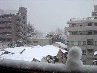 雪景色と雪だるま
