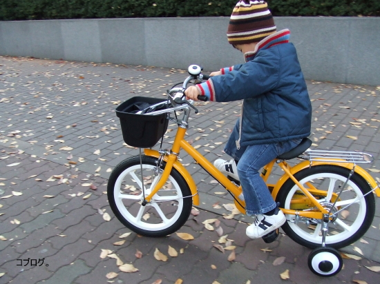 ムスコの3歳の誕生日プレゼントに自転車を買いました。 無印良品の16インチ幼児用自転車です。