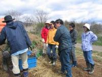 東御ワインプロジェクト苗植え参加