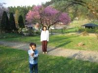 家族でゆっくり 青木村から別所