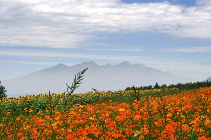 明野のひまわり畑、到着〜八ヶ岳方向