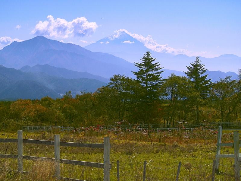 清泉寮の敷地からの富士山