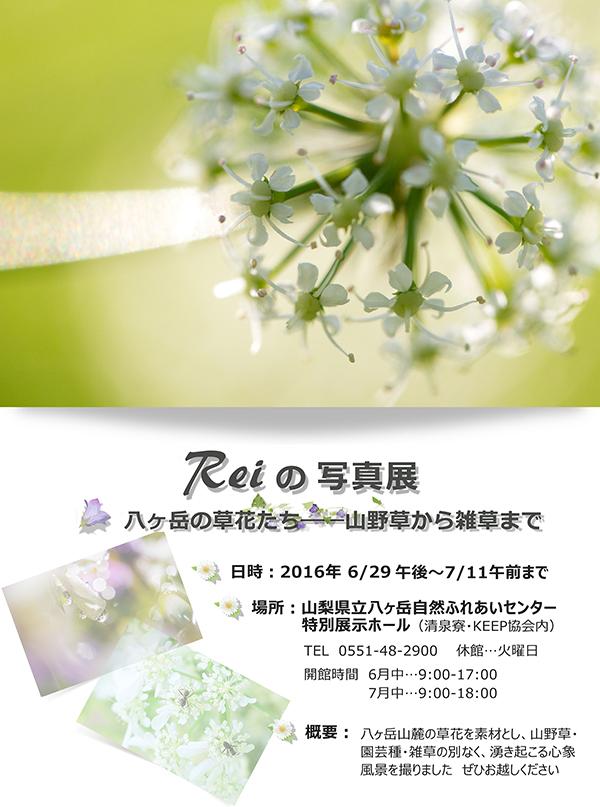 Reiの写真展 八ヶ岳山麓の草花たち、のチラシ