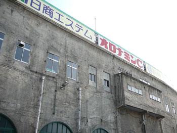 甲子園のツタ061022