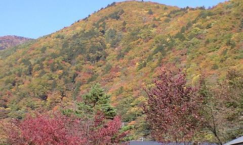 上高地の紅葉 2008年10月