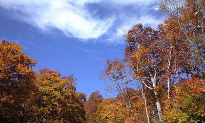 信州・小谷村の鎌池の紅葉