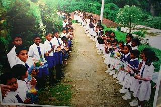 茶園の学校