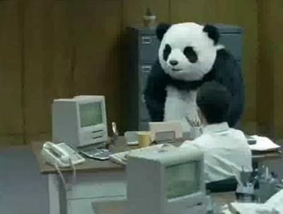 【中国】野良猫がパンダに追われ木の上に逃走、2時間後に救出される