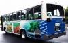 yamanamiバス