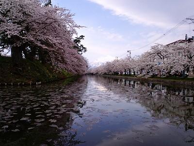 外堀と桜と岩木山