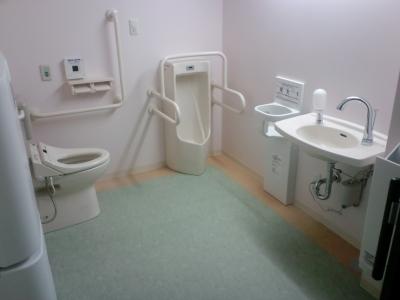 どて箱トイレ