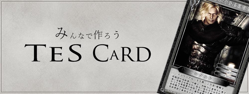 TESカード枠素材