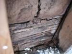 腐れ多木材