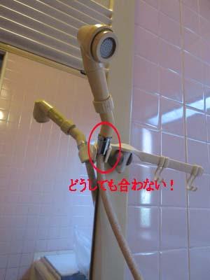 シャワー前