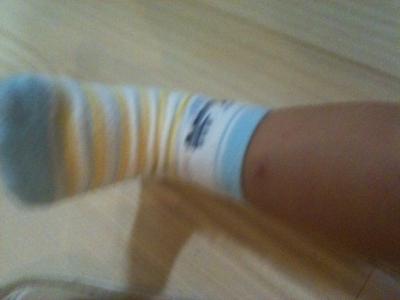 新幹線の靴下