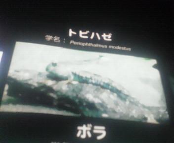 201111111247000.jpg