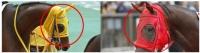 きさらぎ賞 ポスター CM サイン 演出競馬 宮崎リューセイ ダービー オークス 松坂桃李・柳楽優弥・高畑充希・土屋太鳳  大口払戻 CM  競馬会  サトノダイヤモンド メンコ