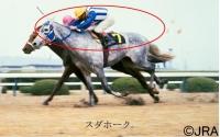 阪神大賞典03