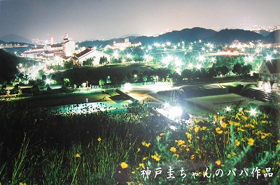 神戸幸せの森夜景