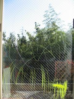 窓に落書き