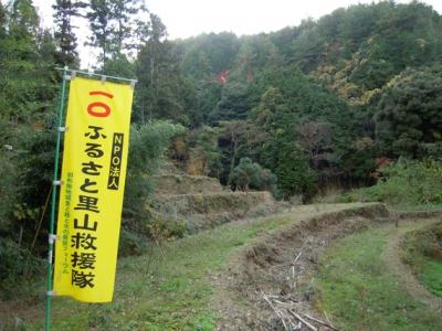 竹林伐採後姿を表した棚田と石垣