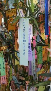 2011070521210000.jpg