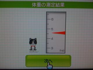 Wii Fit plus  ペット測定