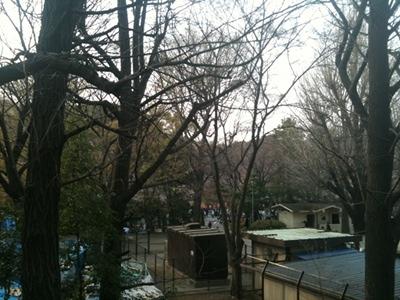20110402 上野公園