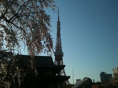 20110405 増上寺